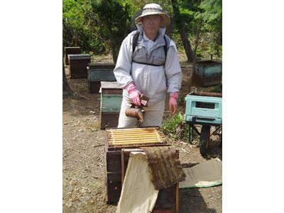 横田養蜂園
